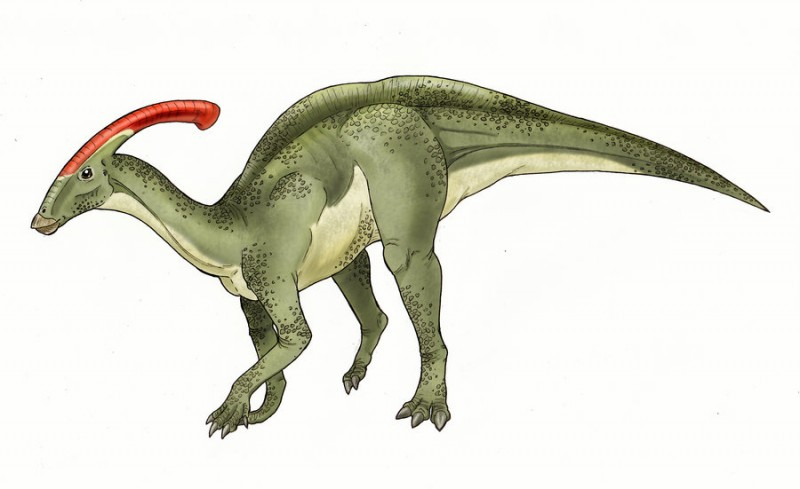 Parasaurolophus by Eurwentala