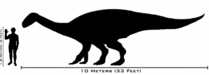 <em>Plateosaurus</em> was an early relative of the giant sauropods.