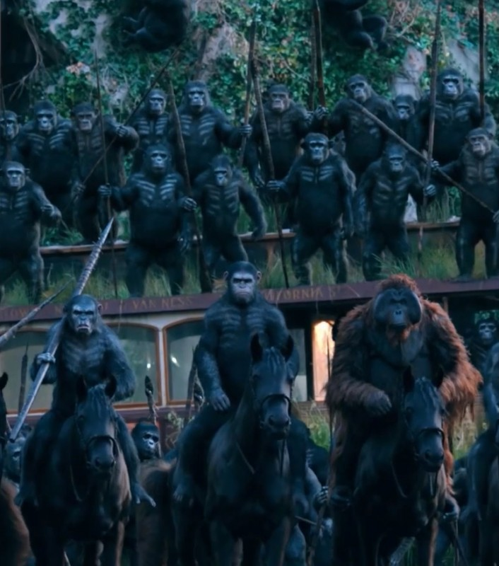 Dawn of the Planet of the Apes Movie Shot