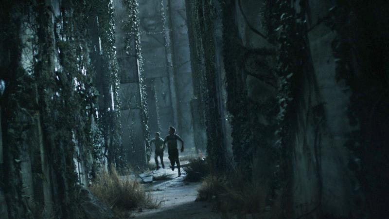 The Maze Runner Movie Shot