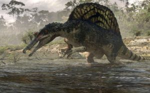 A Brief Overview of the Dinosaurs: Part 5, Basal Theropoda