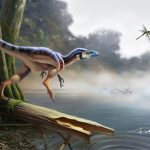 A Brief Overview of the Dinosaurs: Part 6, Coelurosauria