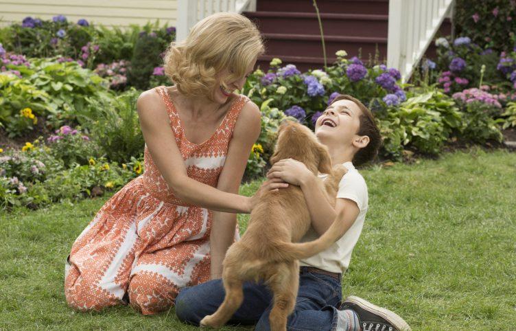 A Dog's Purpose Movie Shot