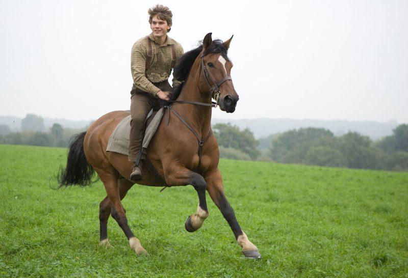 War Horse Movie Shot